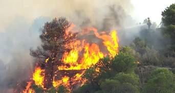 Испанскую Каталонию охватили масштабные пожары: фото, видео