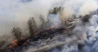 """Пожежа в Сибіру: охоплена вогнем площа тільки зростає, згоріла вже """"ціла Бельгія"""""""