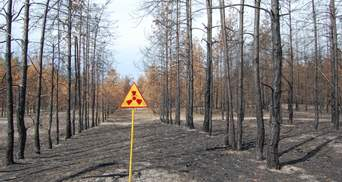 Британские ученые создали водку из Чернобыля: какая она на вкус и когда будет в продаже