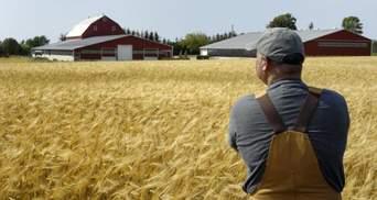 Какую помощь фермерам будет предоставлять украинская власть, чтобы заработал рынок земли
