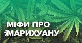 Медичний канабіс і не тільки: чому українцям варто змінити ставлення до конопель