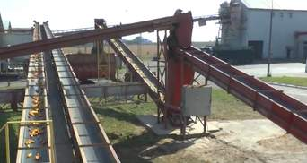 """После модернизации """"Укрлендфарминг"""" обеспечивает аграриев собственным посевным материалом"""