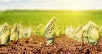 Комітет Ради нашвидкуруч та втиху підтримав альтернативний законопроєкт про ринок землі
