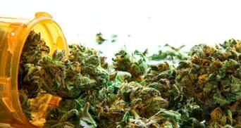 Як українці ставляться до легалізації марихуани: опитування