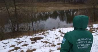 Екологічний контроль 2.0: хто і як має захищати довкілля України