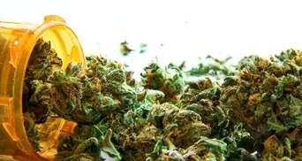 Как украинцы относятся к легализации марихуаны: опрос