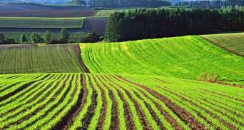 Мораторій на продаж землі продовжить діяти з нового року