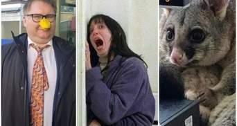 Найсмішніші меми тижня: ляпи українців у Давосі, віруси з AliExpress і пригоди посума-розбійника