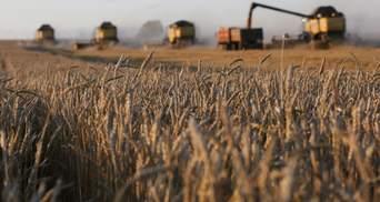 Фермерам-ФЛП будут компенсировать уплаченный ЕСВ уже в этом году