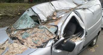 Буревій вже в Польщі: стихія пошкодила будинки, скасовані авіарейси – фото