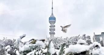 У Багдаді вперше за 12 років випав сніг: вражаючі фото та відео