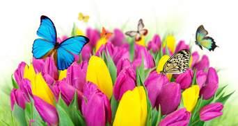 8 марта – Международный женский день: праздничные картинки-поздравления