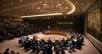 Совбез ООН впервые в истории заседал онлайн из-за пандемии коронавируса