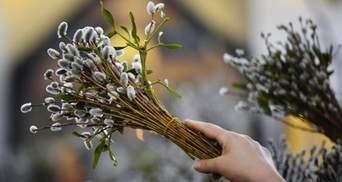 Украинцы отмечают Вербное воскресенье: поздравления политиков