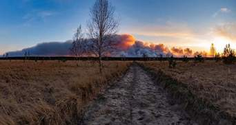 Піщані бурі і пожежі: в чому причина і які наслідки для екології