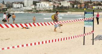 Австралия и Новая Зеландия ослабили карантин: серферы хлынули на пляжи – фото