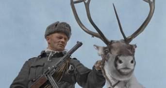 Не знайшли історика, знайшли оленя: до 9 травня у Росії повісили плакат із фінським солдатом