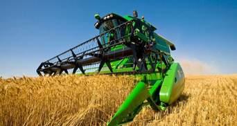 Уряд відзвітував про запаси пшениці в Україні