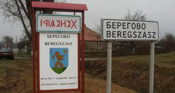 Уступки Венгрии: на Закарпатье планируют создать отдельный Береговский район