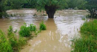 Буковина и Закарпатье продолжают страдать от непогоды: фото и видео затоплений