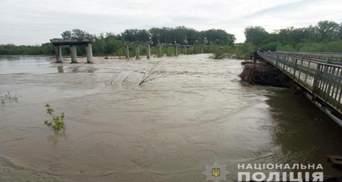 Грозит ли Черновцам подтопление: уровень воды в Пруте достиг пика