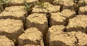 Масштабна посуха в Криму: у водосховищах півострова закінчуються запаси води – фото