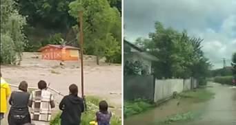 В селе на Прикарпатье магазин смыло водой: шокирующее видео