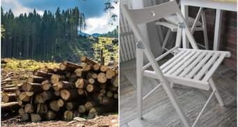 Стільці IKEA зроблені зі зрубаного незаконно українського бука, – розслідування Earthsight