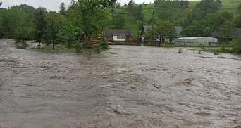 Жахлива негода на Львівщині: повінь загрожує двом районам – фото, відео