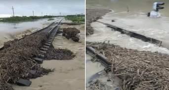 Повінь зруйнувала колію між Івано-Франківськом і Закарпаттям, потяги не курсують: відео