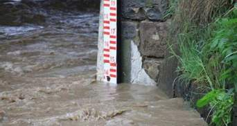 Синоптики прогнозують підняття води у річках: де чекати негоди