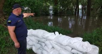 Угроза потопа на Виннитчине: люди пытаются спасти картофель