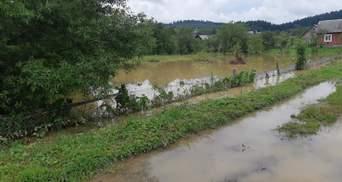 В Украине из-за ливней реки снова могут выйти из берегов: где и когда