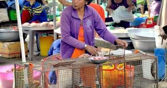 Профілактика епідемії: у В'єтнамі заборонили продаж диких тварин на гуртових ринках