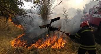 На Луганщине снова бушует масштабный пожар: горит сухая трава – видео