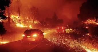 Масштабные лесные пожары в Калифорнии: число погибших растет – фото, видео