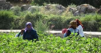 Не ходиш у масці – йди на поле: в Туркменістані карають порушників карантину