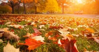 Прогноз погоды на 3 сентября: осень наступила на западе, на остальной территории – летняя жара