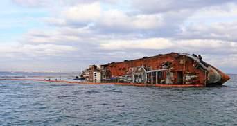 Біля затонулого танкера Delfi знову знайшли мертвого дельфіна: фото