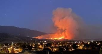 Це чортова кліматична катастрофа, – губернатор Каліфорнії про причину пожеж у США