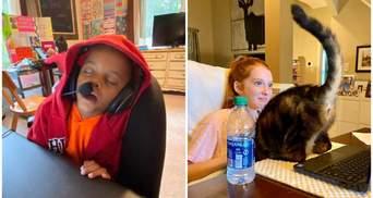 10 забавных фото, которые доказывают, что детям тяжело дается дистанционное обучение