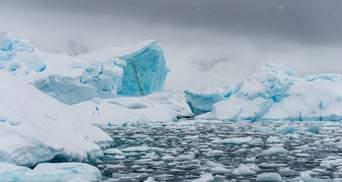 Антарктика стане зеленою: вчені показали, як та коли це станеться – відео
