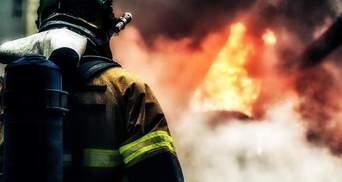 Крупный пожар в Донецкой области: горит лес у Краматорска – фото и видео