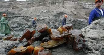 В Украине может наступить экокатастрофа из-за добычи янтаря: эксперт указал на риски