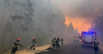 Причини лісових пожеж на Луганщині: слідство розглядає чотири версії