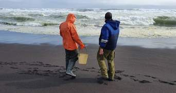 На Камчатке опасна экологическая ситуация, но власти пытались ее замалчивать: детали