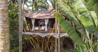 Бамбуковий рай: на Балі побудували тропічний будинок посеред джунглів – фото