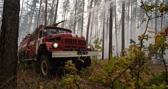 Лесные пожары на Луганщине ликвидировали
