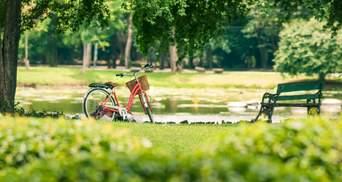 Во Львове выделили 80 миллионов гривен на реконструкцию парков: на что именно потратили деньги