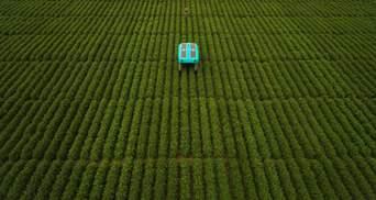Google показала разумных роботов, которые будут помогать фермерам: впечатляющие фото